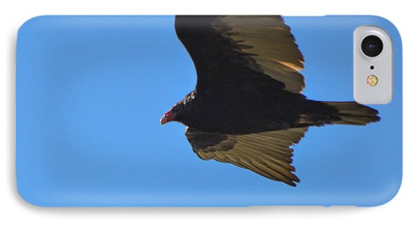 In Flight IPhone Case by Miranda Strapason