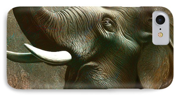 Indian Elephant 3 IPhone Case by Jerry LoFaro