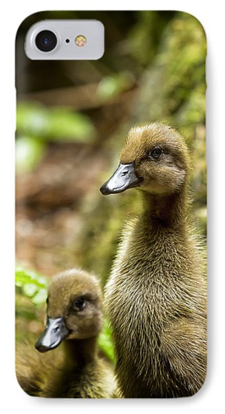 Indian Runner Ducklings No. 1 IPhone Case by Belinda Greb