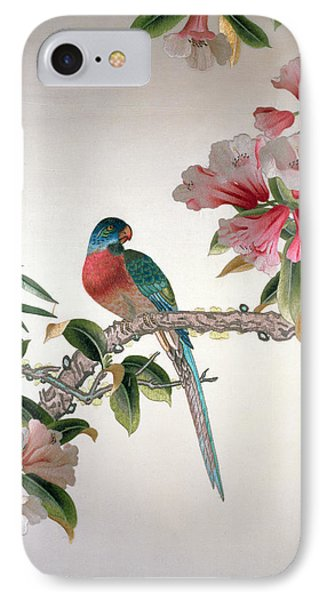 Jay On A Flowering Branch IPhone Case by Chinese School