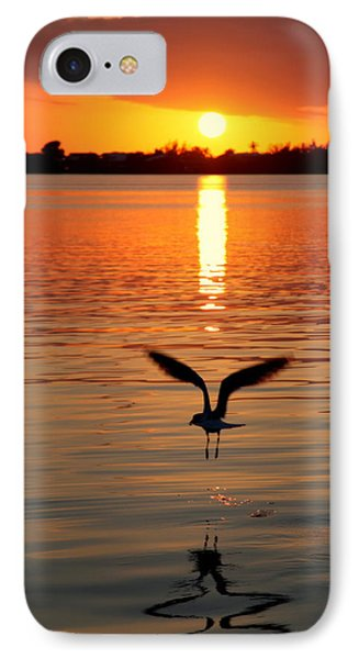 Jonathan Livingston Seagull IPhone Case by Karen Wiles