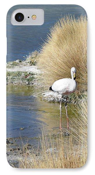 Juvenile Flamingo No. 64 IPhone 7 Case by Sandy Taylor