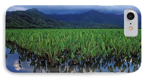 Kauai Taro Field Phone Case by Kathy Yates