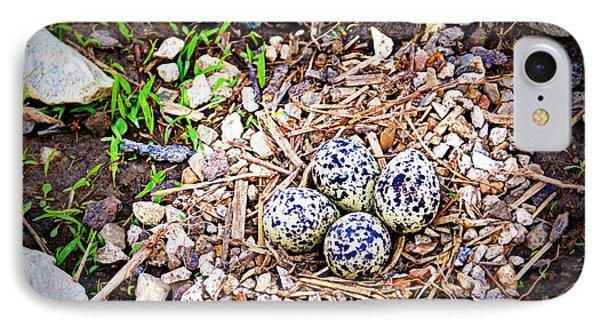 Killdeer Nest IPhone Case by Cricket Hackmann