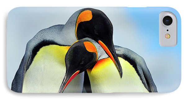 King Penguin IPhone Case by Tony Beck