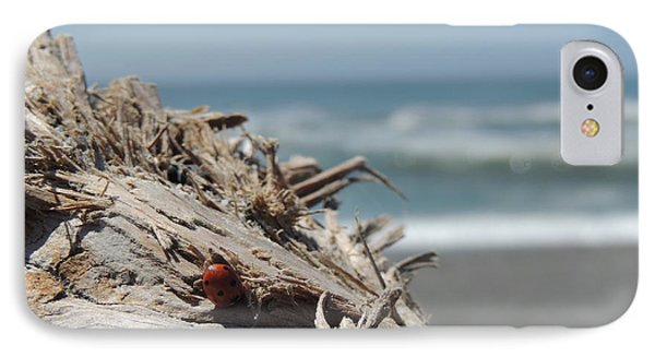 Ladybug In Driftwood IPhone Case by Traci Hallstrom