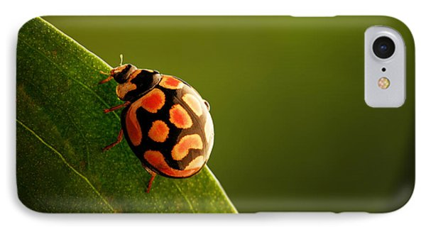 Ladybug  On Green Leaf IPhone Case by Johan Swanepoel