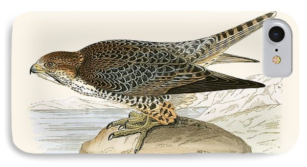 Lanner Falcon IPhone 7 Case by English School
