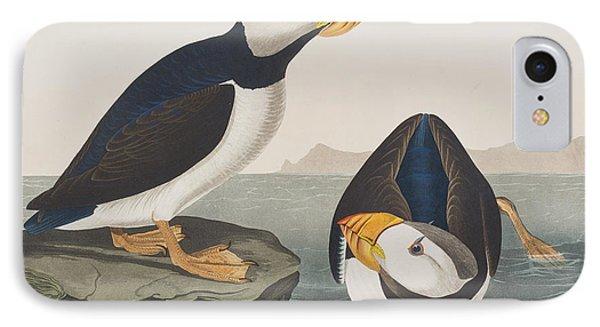 Large Billed Puffin IPhone Case by John James Audubon