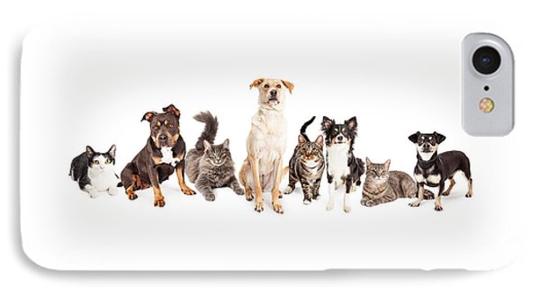 Large Group Of Cats And Dogs Together IPhone Case by Susan Schmitz