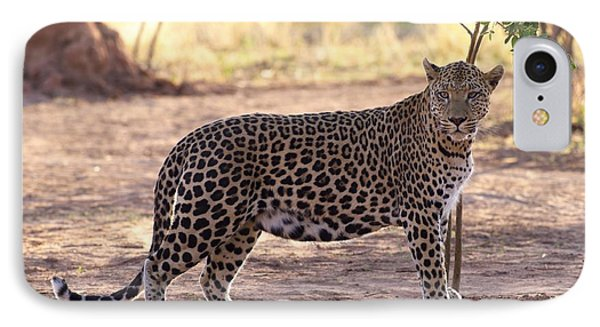 Leopard IPhone Case by Keith Levit