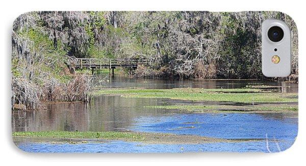 Lettuce Lake With Bridge Phone Case by Carol Groenen