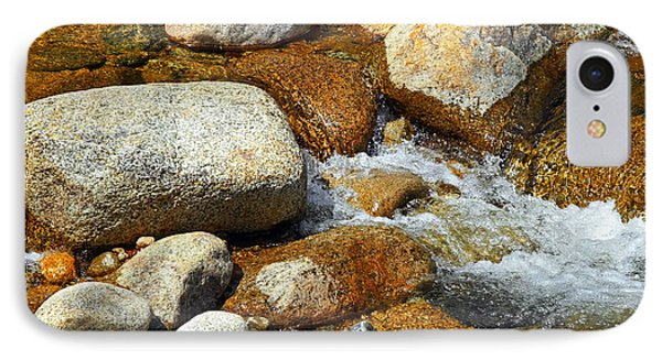 Life Of The Riverbed Phone Case by Lynda Lehmann