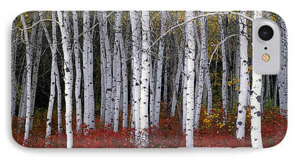 Light In Forest IPhone Case by Leland D Howard