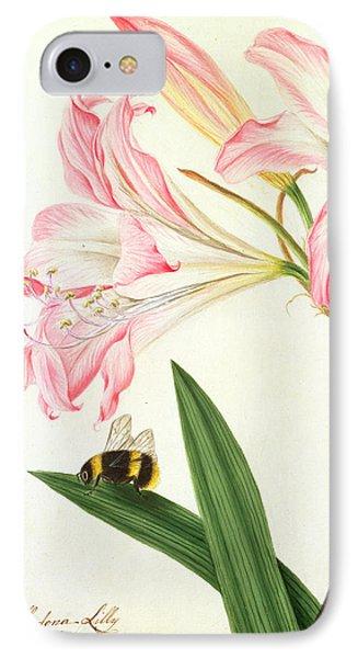 Lilium Belladonna And Bee IPhone Case by Matilda Conyers