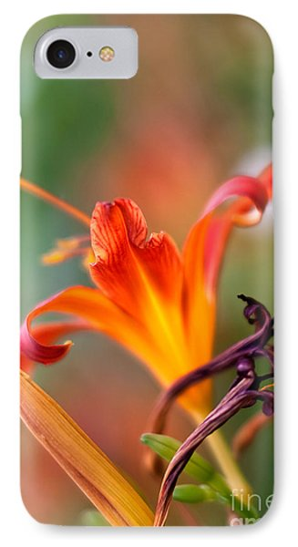 Lilly Flowers IPhone Case by Nailia Schwarz