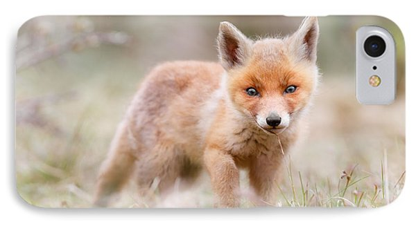 Little Fox Kit, Big World IPhone Case by Roeselien Raimond