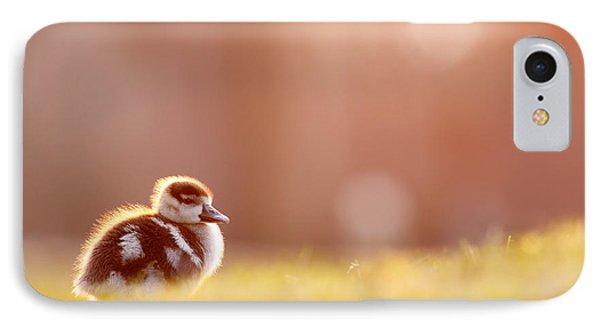 Little Furry Animal - Gosling In Warm Light IPhone Case by Roeselien Raimond