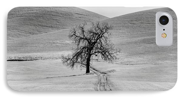 Lone Tree In The Palouse IPhone Case by Jon Glaser