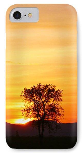 Lone Tree Sunset Phone Case by Nick Gustafson