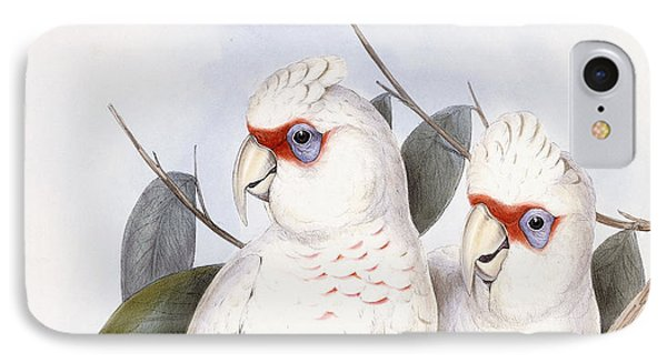 Long-billed Cockatoo IPhone Case by John Gould
