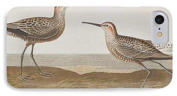 Long-legged Sandpiper IPhone 7 Case by John James Audubon