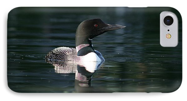 Loon Watching IPhone Case by Sandra  Huston