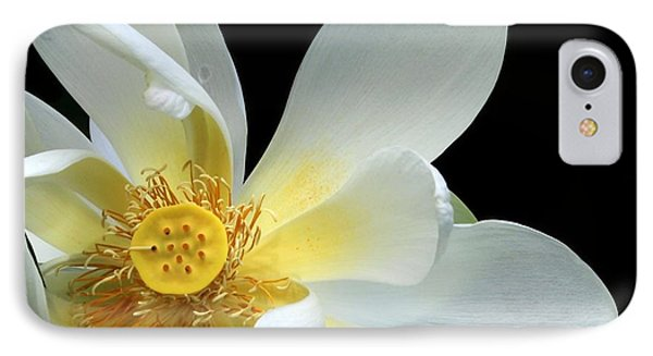 Lotus From Above Phone Case by Sabrina L Ryan
