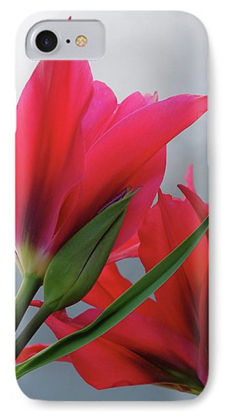 Love IPhone Case by Rona Black