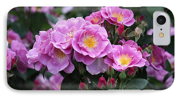 Lucky Floribunda Roses IPhone Case by Rona Black