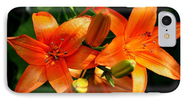 Marmalade Lilies IPhone Case by David Dunham