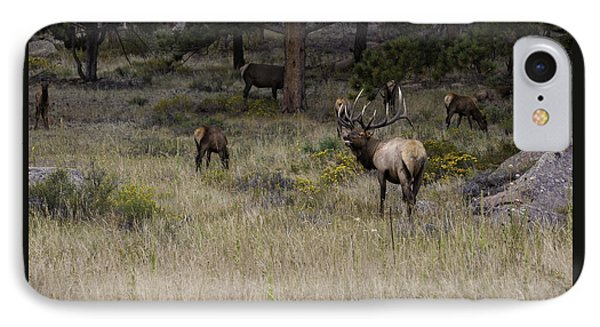 Master Of His Domain - Bull Elk IPhone Case by Thomas Schoeller