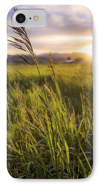 Meadow Light IPhone Case by Chad Dutson