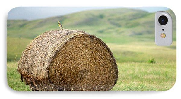 Meadowlark Heaven IPhone Case by Todd Klassy