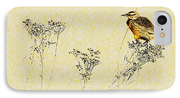 Meadowlark In Kansas Prairie 1 IPhone Case by Anna Louise