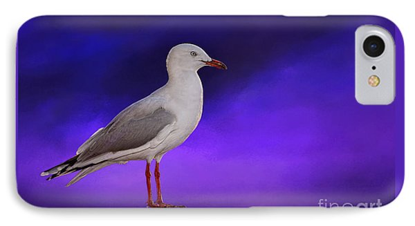 Midnight Seagull By Kaye Menner IPhone Case by Kaye Menner