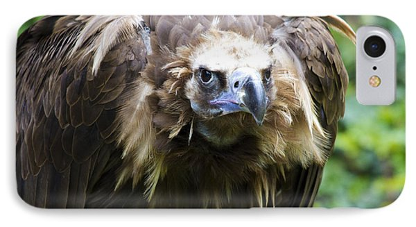 Monk Vulture 3 IPhone Case by Heiko Koehrer-Wagner