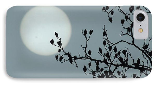 Moon And Poplar Silhouette IPhone Case by Jamie K Reaser