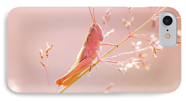 Mr Pink - Pink Grassshopper IPhone Case by Roeselien Raimond