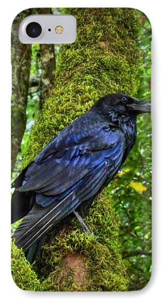Muir Woods Raven 001 IPhone 7 Case by Lance Vaughn