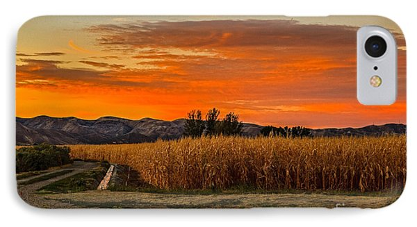 Must Be Fall IPhone Case by Robert Bales