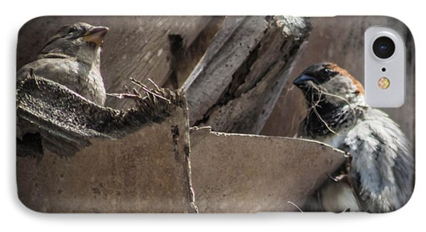 Nest Building IPhone Case by Debra Forand