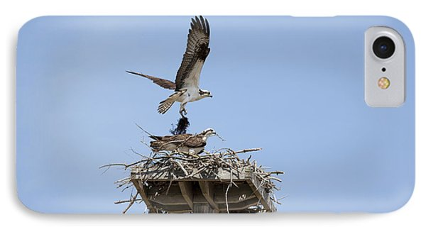 Nesting Osprey In New England Phone Case by Erin Paul Donovan