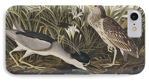 Night Heron Or Qua Bird IPhone 7 Case by John James Audubon