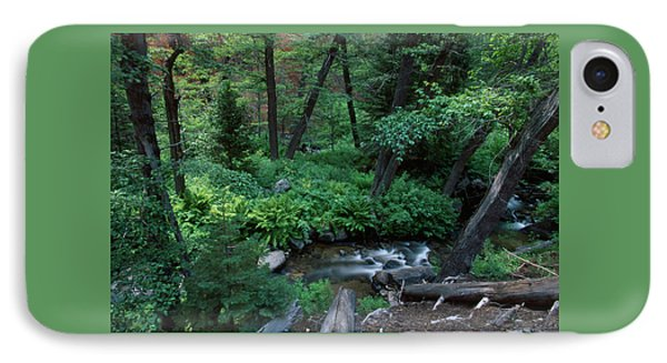 Nine Mile Creek - Golden Trout Wilderness IPhone Case by Soli Deo Gloria Wilderness And Wildlife Photography