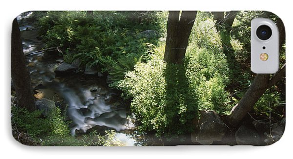 Ninemile Creek IPhone Case by Soli Deo Gloria Wilderness And Wildlife Photography