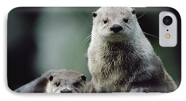 North American River Otter Lontra IPhone 7 Case by Gerry Ellis