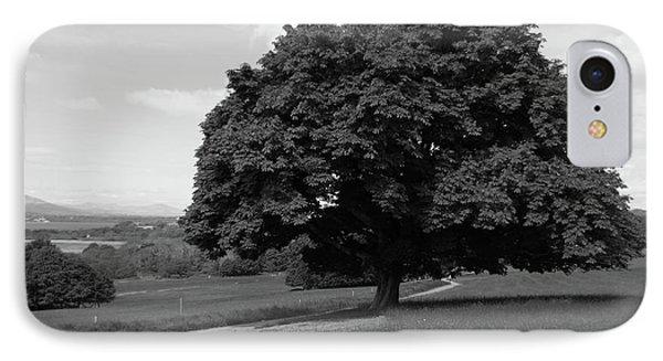 Oak Tree - Killarney National Park Phone Case by Aidan Moran