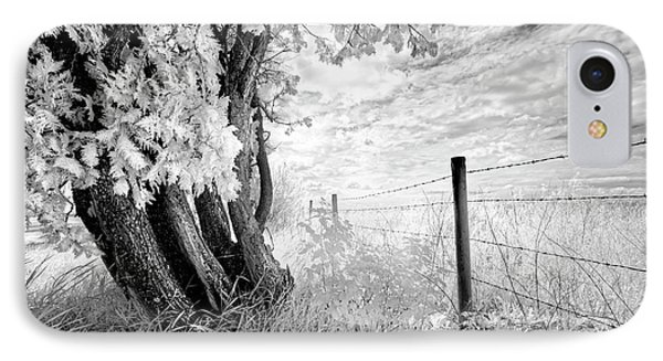 Old Cedar And Barbed Wire IPhone Case by Dan Jurak
