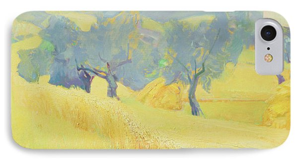 Olive Trees In Tuscany IPhone Case by Antonio Ciccone